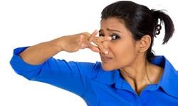 Como combater a halitose